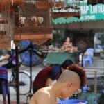 2015. VN. 4 avril. Hanoi (83) 2